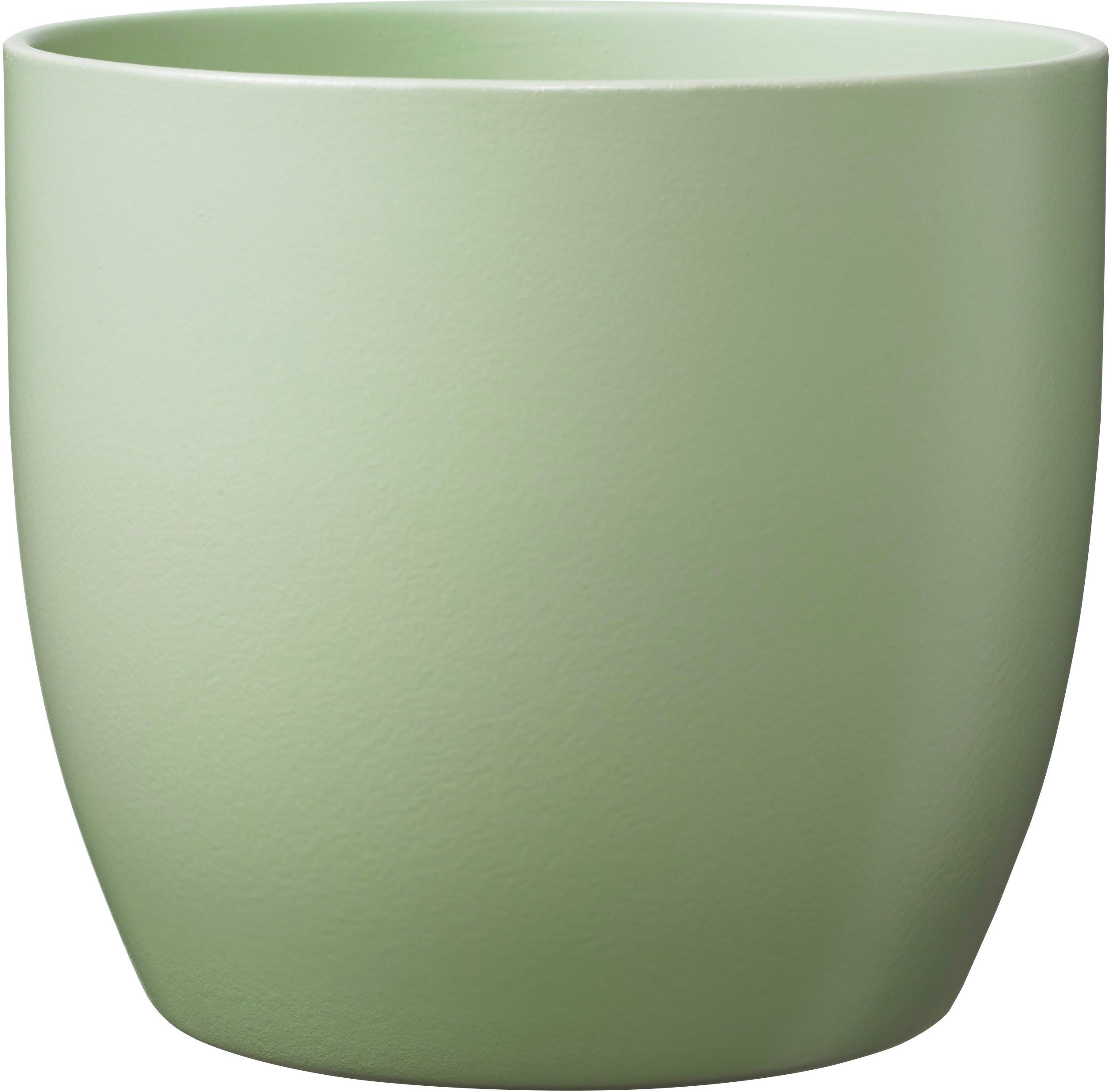 בזל ירוק בהיר